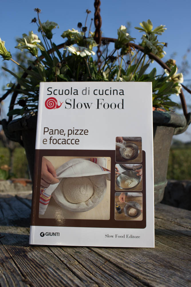 Sapori_e_Dissapori_Food_Pane_Pizze_e_focacce_2 (1 di 1)