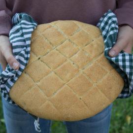 Il tipico pane della campagna padovana, per il WBD 2018.